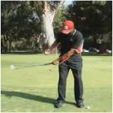 TALY Chipping - Push Pull the Red Ball